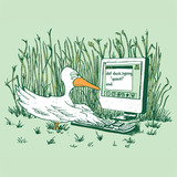 Sidebar_ducktyping-square